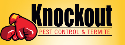 Business Search For Pest Control Near Escondido Ca