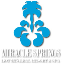 Miracle Springs Resort & Spa logo