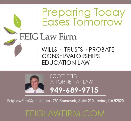 FEIG Law Firm logo