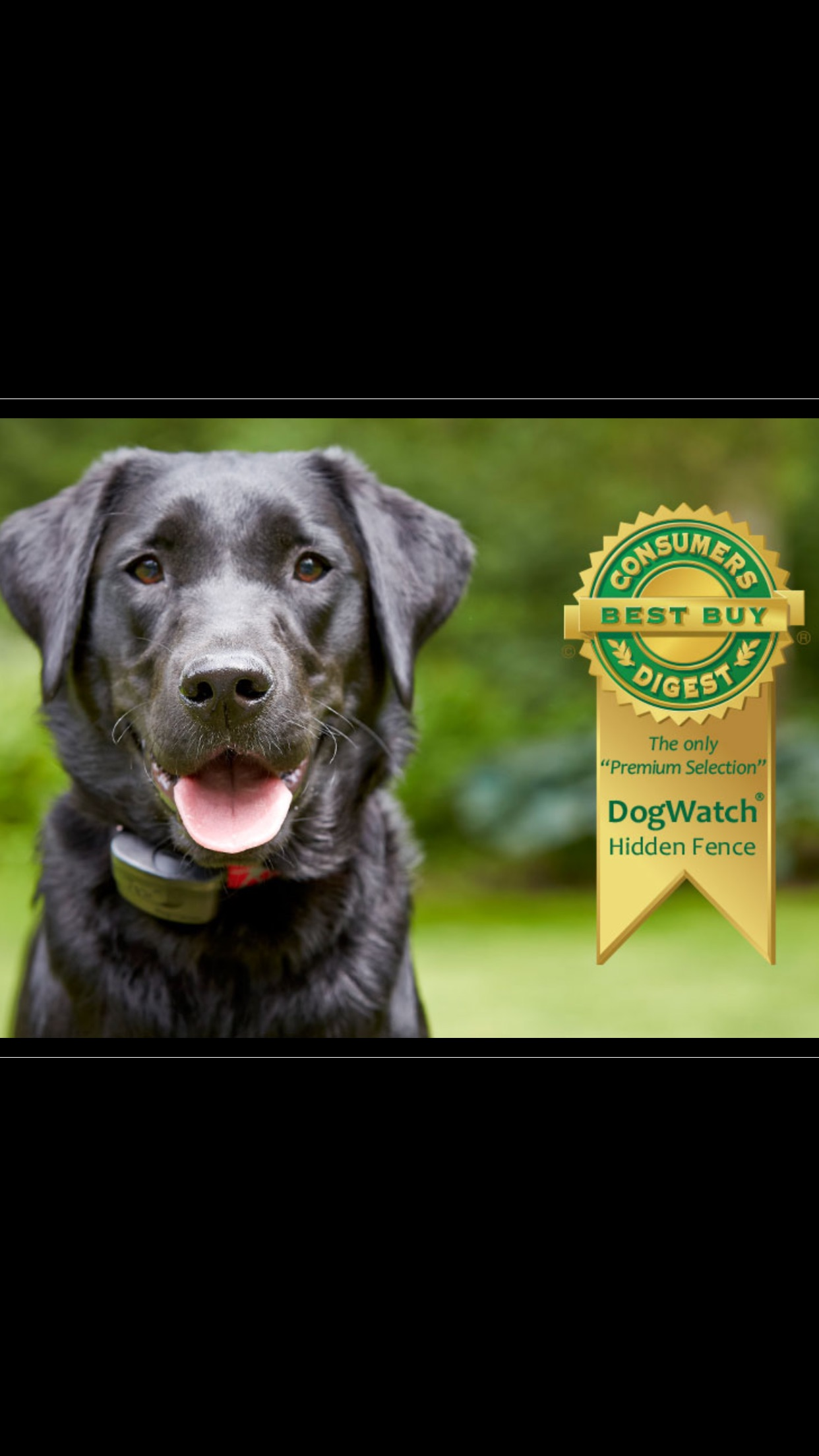 SouthWest DogWatch logo